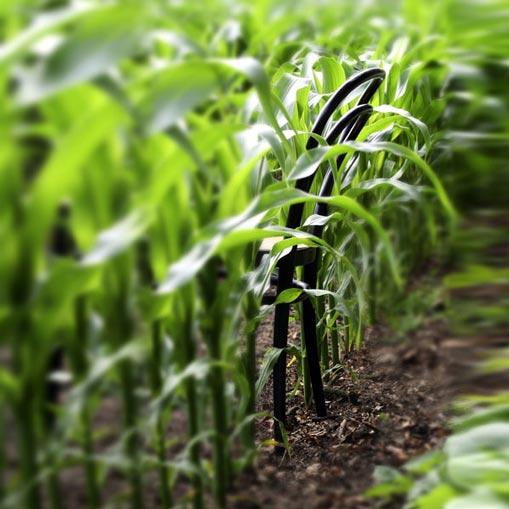 Nachhaltigkeit bei Thonet